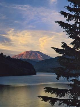 Mount St. Helens (After) by Steve Terrill