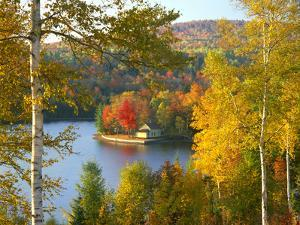 Summer Home Surrounded by Fall Colors, Wyman Lake, Maine, USA by Steve Terrill