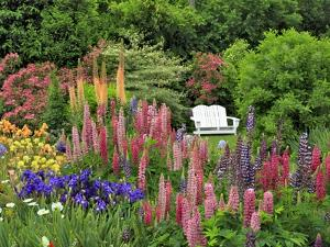White Chair in Flower Garden by Steve Terrill