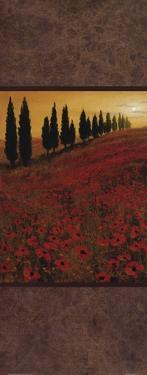 Poppy Field Panel II by Steve Thoms