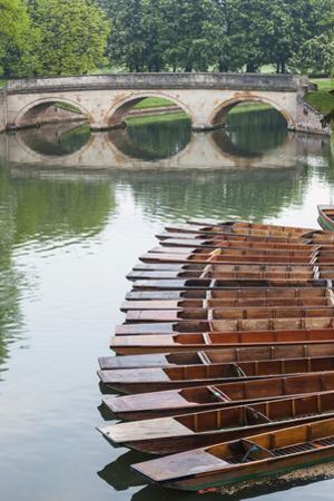 England, Cambridgeshire, Cambridge, The Backs by Steve Vidler