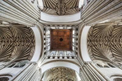 England, East Anglia, Norfolk, Norwich, Norwich Cathedral by Steve Vidler