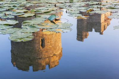 England, East Sussex, Bodiam Castle by Steve Vidler