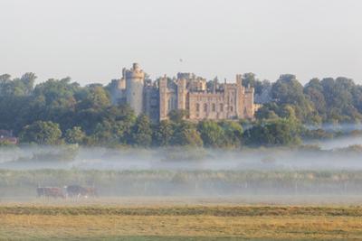 England, West Sussex, Arundel, Arundel Castle by Steve Vidler