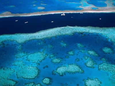 Great Barrier Reef, Whitsundy, Queensland, Australia by Steve Vidler