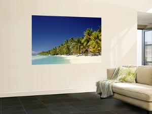 Palm Trees and Tropical Beach, Aitutaki Island, Cook Islands, Polynesia by Steve Vidler