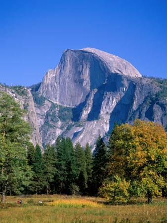 Yosemite National Park, Half Dome and Autumn Leaves, California, USA by Steve Vidler