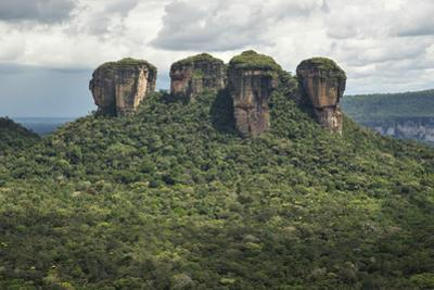 Rock formations in Chiribiquete National Park. by Steve Winter