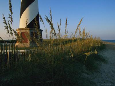 Sea Oats Bending in Wind Near the Cape Hatteras Lighthouse by Steve Winter