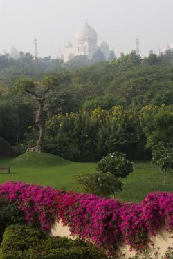 The Taj Majal Looms Behind Manicured Lawns and Gardens of the Oberoi Amarvilas Resort by Steve Winter