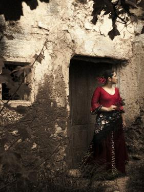 A Young Spanish Woman Wearing Traditional Flamenco Dress Standing in a Doorway to an Old Building by Steven Boone