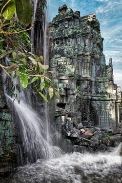 Jungle Fantasy by Steven Boone