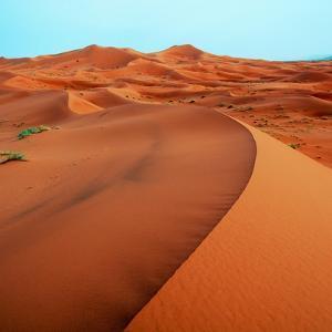 Merzouga Dunes by Steven Boone