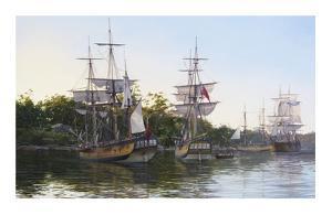 First Fleet by Steven Dews