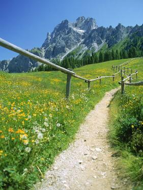 Trail to the Sexton Sundial, Sesto, Italy by Steven Emery