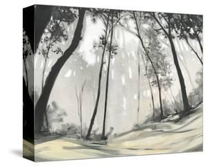 Black Forest by Steven Garrett