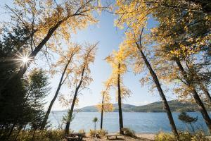 Les Mason State Park Along Whitefish Lake, Montana by Steven Gnam