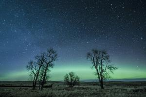 Northern Lights over the High Plains of Montana by Steven Gnam