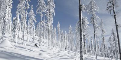 Snowboarder Carving in the Whitefish Range, Stryker Ridge, Montana