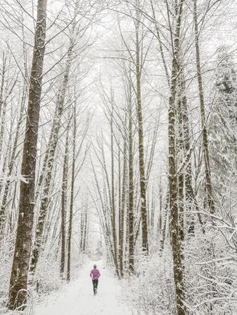 Winter Trail Running by Steven Gnam