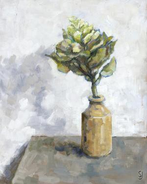 Cabbage Flower by Steven Johnson