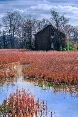 Chesapeake Barn by Steven Maxx