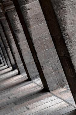 Pillars by Steven Maxx