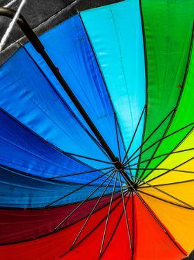 Umbrella by Steven Maxx