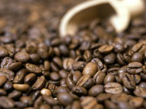 Fresh Coffee Beans Out of the Bag by Steven Morris