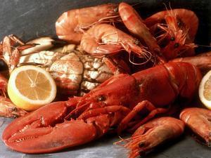 Lobster, Shrimp and Crab by Steven Morris