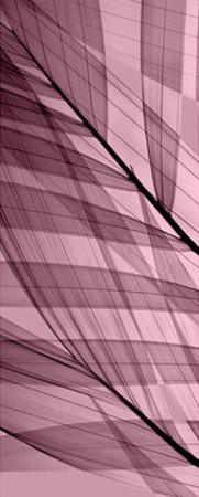Palms A, Rose Quartz by Steven N. Meyers