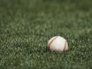 Baseball by Steven Sutton