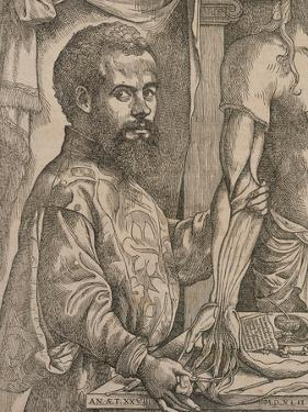 Andreas Vesalius Dissecting the Muscles of the Forearm of a Cadaver, 1543 by Steven van Calcar