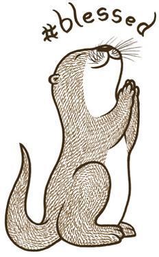 Fortunate Otter by Steven Wilson