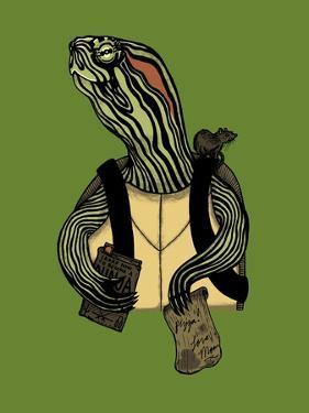 Hero in a Halfshell by Steven Wilson
