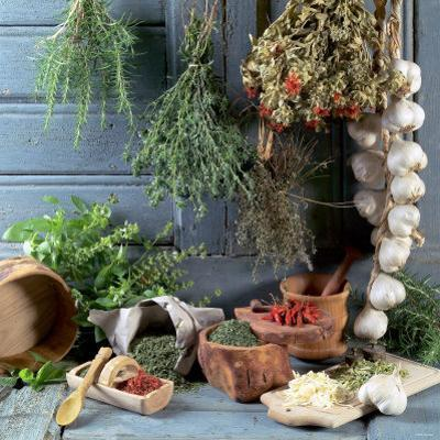 Still Life: Drying Herbs and Spices