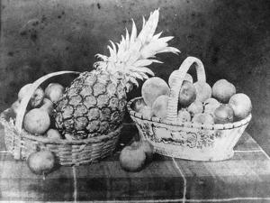 Still Life of Fruit, 1844