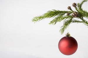 Still Life of Red Bauble Hanging on Christmas Tree