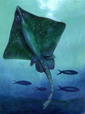 Stingray and Fish Underwater