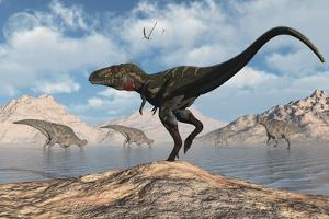 A Carnivorous Nanotyrannus Stalking a Herd of Corythosaurus by Stocktrek Images