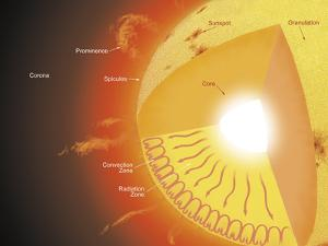 A Cutaway View of the Sun by Stocktrek Images