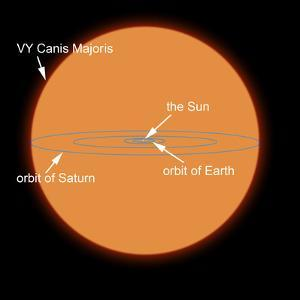 A Diagram Comparing the Sun to VY Canis Majoris by Stocktrek Images