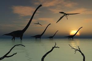 A Herd of Omeisaurus Dinosaurs Walking Through Shallow Waters by Stocktrek Images
