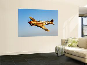 A P-40N Warhawk in Flight by Stocktrek Images