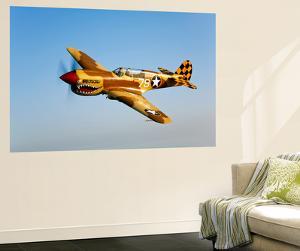 A P-40N Warhawk in Flight by Stocktrek Images