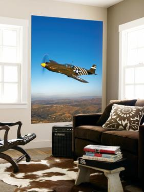 A P-51A Mustang in Flight by Stocktrek Images