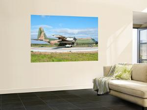 A Portuguese Air Force C-130H Hercules at Montijo Air Base, Portugal by Stocktrek Images