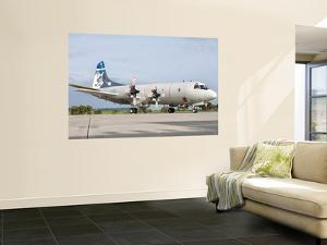 A Portuguese Air Force P-3C Cup Orion by Stocktrek Images
