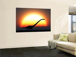 A Silhouetted Omeisaurus Walks Pass the Rising Sun at the Start of a New Day by Stocktrek Images