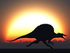 A Silhouetted Spinosaurus Sprinting Against a Setting Set at the End of a Jurassic Day by Stocktrek Images